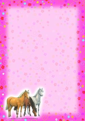 Hest- Skolepakke-4309