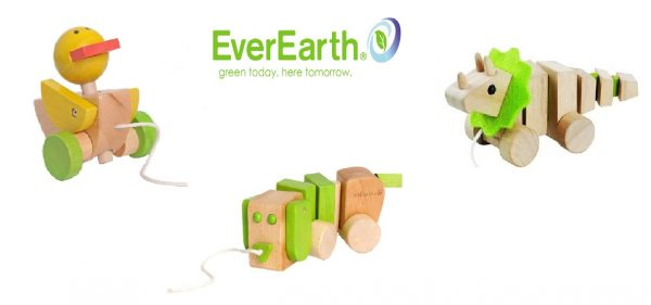 EverEarth Pull Along Pakke -0